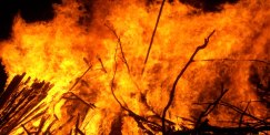 View our Burn Permits page