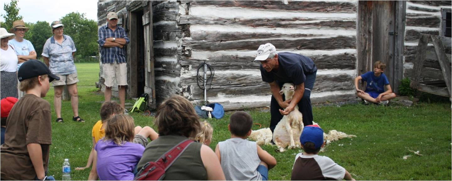 Sheep shearing at the Glengarry Pioneer Museum